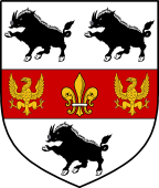 Coat of Arms from France for Bushe
