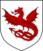 English Family Shield for Drake