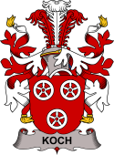 Swedish Coat of Arms for Koch