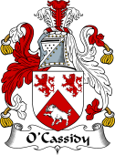 Irish Coat of Arms for O'Cassidy