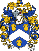 English or Welsh Coat of Arms for Orchard (Devonshire)