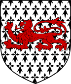 English Family Shield for Drew