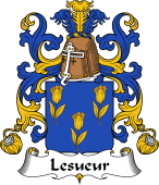 Coat of Arms from France for Lesueur (Sueur le)