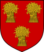 Coat of Arms from France for Comyn