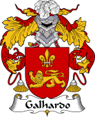 Portuguese Coat of Arms for Galhardo
