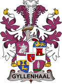 Swedish Coat of Arms for Gyllenhaal