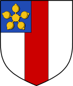 Coat of Arms from France for Storr