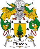 Spanish Coat of Arms for Pineda