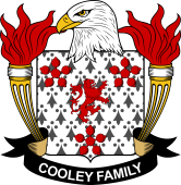 American Coat of Arms for Cooley