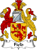 Irish Coat of Arms for Field