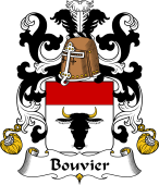 Coat of Arms from France for Bouvier