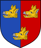 Coat of Arms from France for Copin