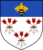 English Family Shield for Peel