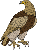 Birds of Prey Clipart image: Royal Eagle or Golden