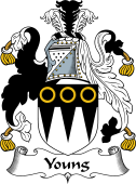 Scottish Coat of Arms for Young