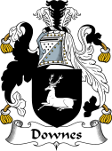 English Coat of Arms for Downes