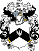 English or Welsh Coat of Arms for Woolley