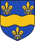 Coat of Arms from France for Hickes