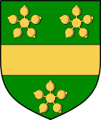 Irish Family Shield for Marward (Meath)
