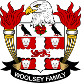 American Coat of Arms for Woolsey