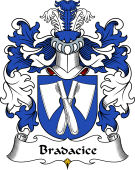 Polish Coat of Arms for Bradacice or Bradczyce