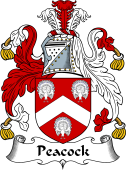 English Coat of Arms for Peacock II