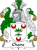 Scottish Coat of Arms for Chane