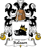 Coat of Arms from France for Salaun