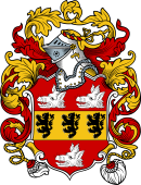 English or Welsh Coat of Arms for Wyatt