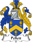 English Coat of Arms for Pellett