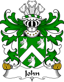 Welsh Coat of Arms for John (AP JENKIN AP MADOG)