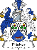 English Coat of Arms for Pitcher