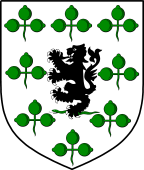 Irish Family Shield for O'Gallagher or Goligher