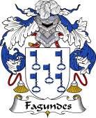 Portuguese Coat of Arms for Fagundes