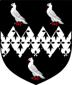 Coat of Arms from France for Dove