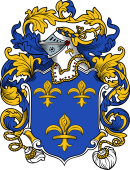 English or Welsh Coat of Arms for Burrows (ref Berry)