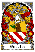 German Wappen Coat of Arms Bookplate for Forster