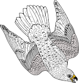 Birds of Prey Clipart image: Iceland Falcon (Diving)