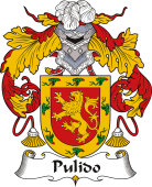 Spanish Coat of Arms for Pulido