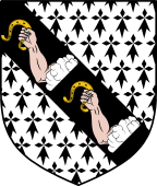 Coat of Arms from France for Borlase